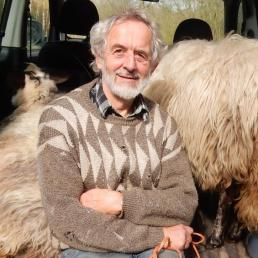 HTF, 2019-03-27, transport schapen naar Landje van Moed-1 - kopie