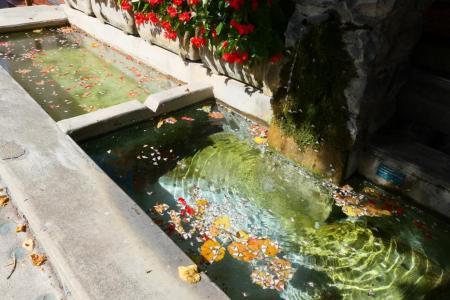 DROME, 2019-09-16-037, Chatillon-en-Diois, fontein met buxusmotten - kopie